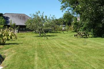 Guests are welcome to use the Owners' orchard.