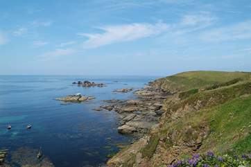 An exhilarating walk westwards along the coast path will take you to Kynance Cove.