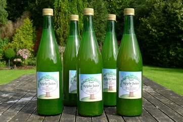 Freshly pressed Tuell Farm apple juice.