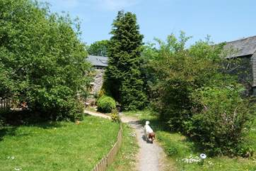 The path through the shared garden up to the cottages, each of which have their own patio.