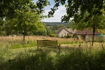 This is a view from the top of the orchard, looking back at the cottage to the right, and the Owner's historic house to the left.