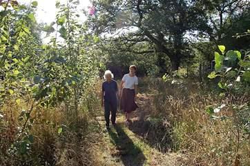 Woodland walks.