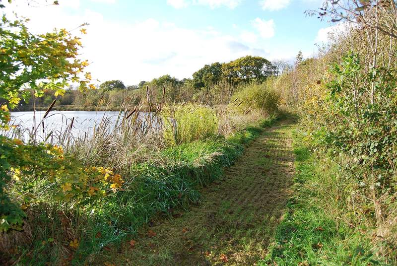 The path around the lake in autumn.