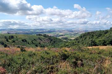 Explore the beautiful Quantock Hills right on your doorstep. Fabulous walking countryside.
