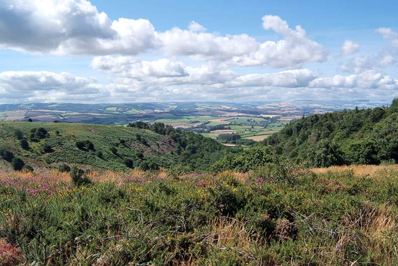 Explore the beautiful Quantock Hills right on your doorstep - fabulous walking countryside.