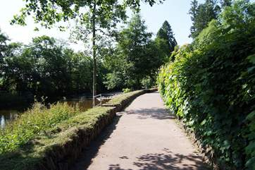 The riverside walk from the centre of Dulverton. Sit on a bench and listen to the gentle sound of the river.