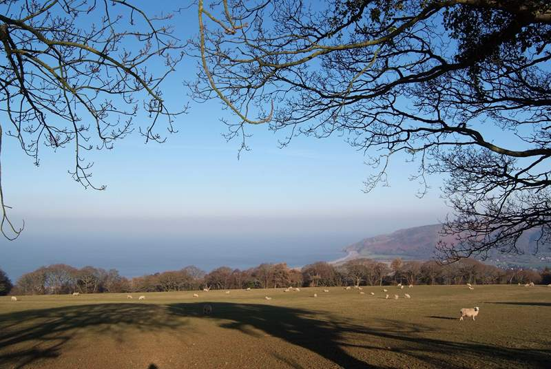 This is where Exmoor meets the sea, close to Porlock.