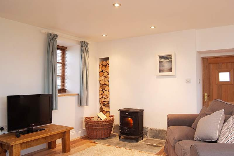 The sitting-area where plenty of logs for the wood-burner are provided.