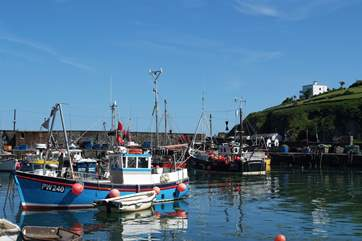 Many of the boats offering fishing trips along the coast.