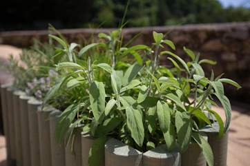 There is even a little herb garden at your front door - please do use it.