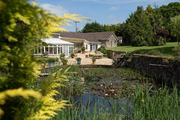 The Lodge is at the far end of this picture but what an arrival to set the scene, with this lovely pond complete with water lilies and goldfish.
