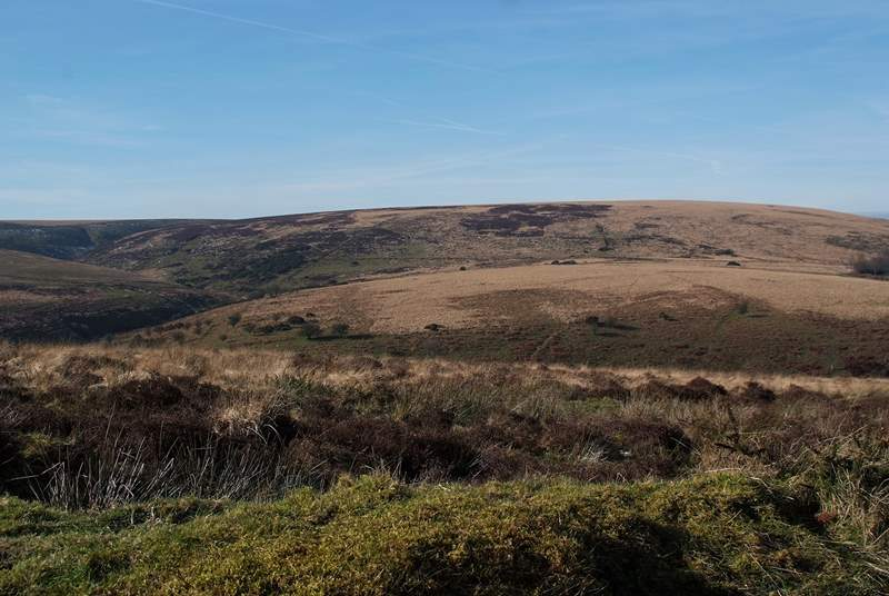 The open moorland of Exmoor is right on your doorstep.