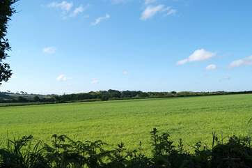 The wonderful far reaching view from the garden across the fields behind the cottage.