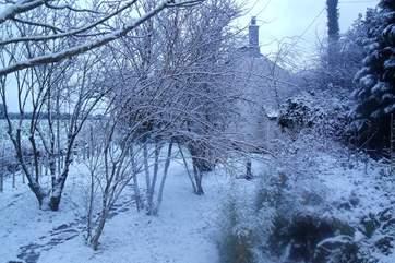 The garden under snow is a winter wonderland.