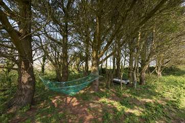 There is plenty of space including a little area of woodland with a hammock, rope swing and old boat for the children to make their own adventures.