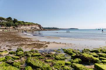Swanpool Beach at low tide, perfect for rockpooling.