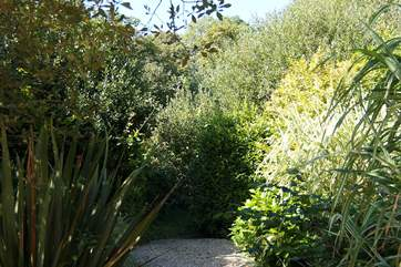 Gravelled paths meander between the shrubs and bushes.