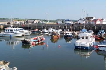 The east Devon and west Dorset coastline offers lovely fishing villages and harbours to visit.