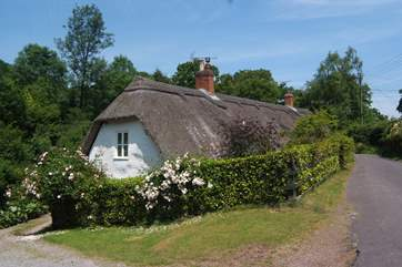 This is the setting for the cottage at the heart of the conservation village of Holford, right on the edge of the Quantock Hills.