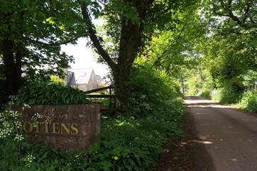 This is the pretty country lane leading to the cottage - this is a lovely area for walking.