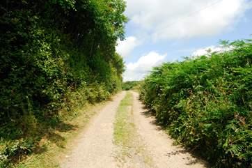 The farm lane leading to Largin Farm and Little Largin.