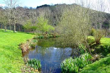 The natural pond beyond the cottages (take care with toddlers as it is not fenced).
