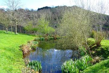 The pretty wildlife pond and views beyond - (take care with toddlers as the pond is unfenced).