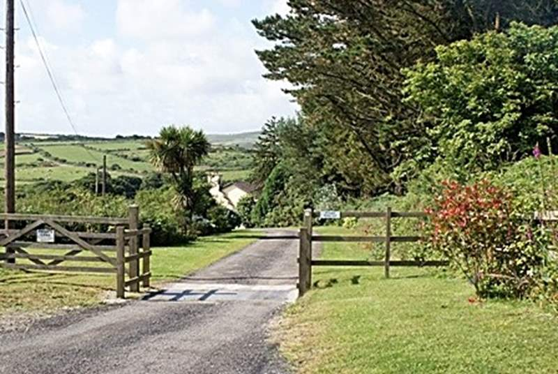 The driveway to the farm.