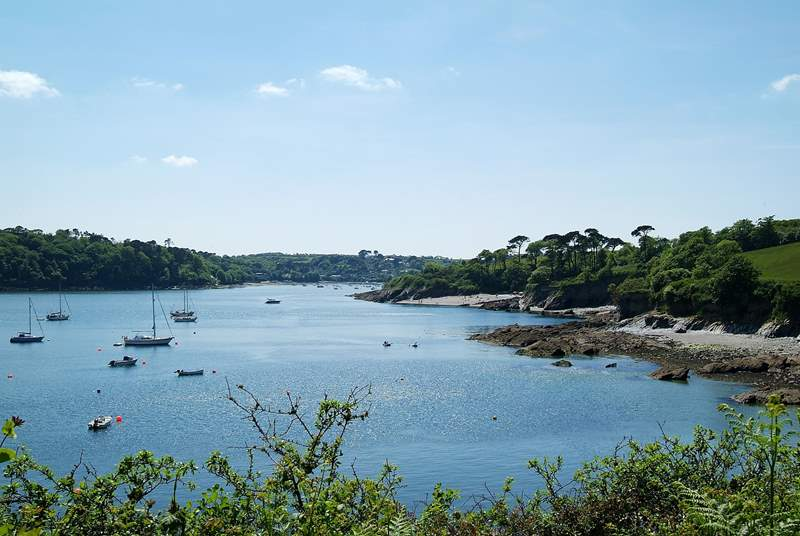 A view from the other side of the estuary,with Trebah and Glendurgan gardens along the river's edge on the right.