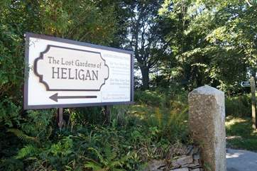 The Lost Gardens of Heligan are a ten minute drive away, definitely worth a visit.