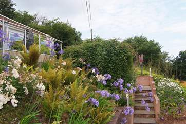 Whatever the time of year the gardens are beautiful. These steps lead up to the decking-area.