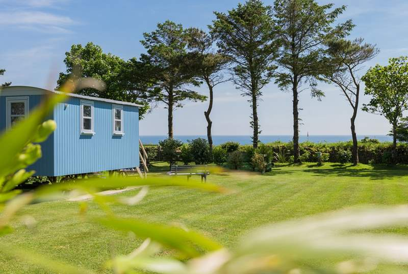 Forget-Me-Not looks straight out to sea and has a very spacious garden area.