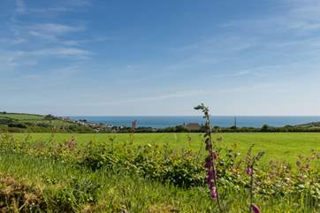 This is your view across the field in front of the huts over to Praa Sands and the sea beyond when the farmer plants his low level crops.