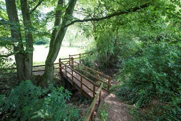 The wooden steps lead from the glamping site down to the lower meadow, lake and network of footpaths beyond.