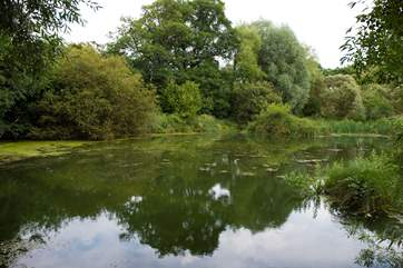 The pretty, fenced pond on-site (please take care with children).