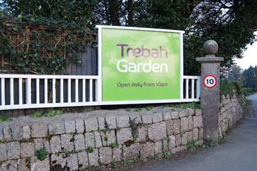 Trebah Gardens are just up the road and well worth a visit and they are dog friendly.