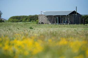 Situated in a wild flower meadow, Rusty is the prefect all year round glamping getaway.