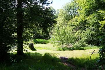 Another view of the pond and the woodland that borders it.