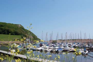 Seaton has a pretty harbour - home to working fishing boats and yachts alike.