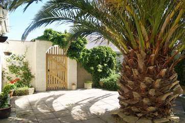 The pineapple shaped palm tree offers welcome shade in the hot summer.