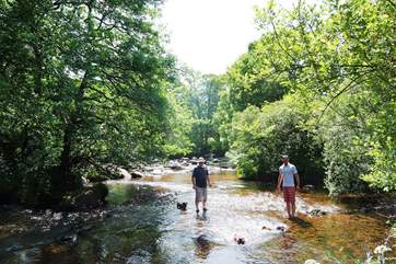 The dogs will love swimming in the numerous fast flowing rivers and streams found on the moor. This is Dartmeet.