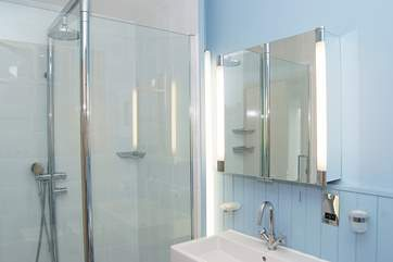 The double-sized shower in the bathroom.