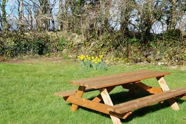 The front garden has a bench seat for some al fresco dining when the sun is shining.