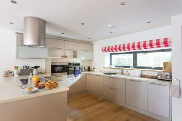 Plenty of space for family meal preparation, and plenty of equipment too.