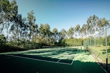 The tennis court is through the trees.