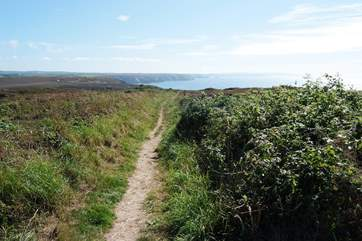 The footpath down to Chapel Porth is a stunning walk.