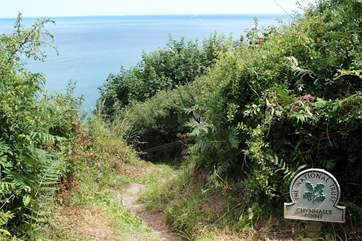 Chynhalls Point is en route towards the Lizard peninsula which is just over 10 miles away from Coverack passing through this Area of Outstanding Natural Beauty.