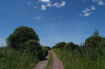 The Levels are criss crossed with ancient drovers' trails - excellent for walking and cycling.