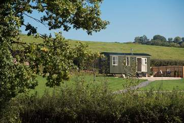 Shepherd's Joy - a fantastic place for a romantic, relaxing, get away from it all holiday.