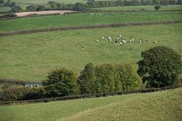 The Owners have created some farm walks for you to enjoy and experience the most amazing views. Can you see Shepherd's Bliss bottom left of the photo?